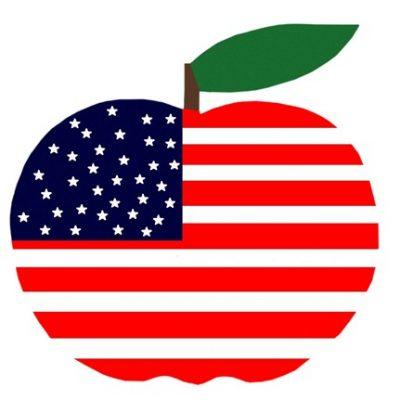 strijkappli appel america