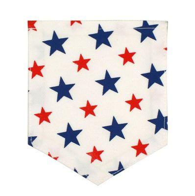 applicatie zak met sterren rood wit blauw
