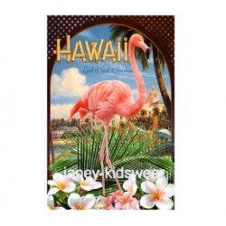 flamingosapp-510x597
